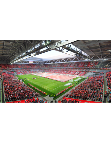 Stade Pierre Mauroy Lille LOSC