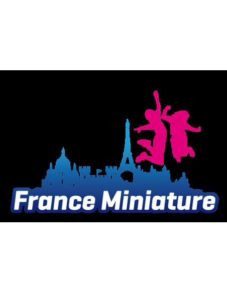 FRANCEMINIATURE 2020