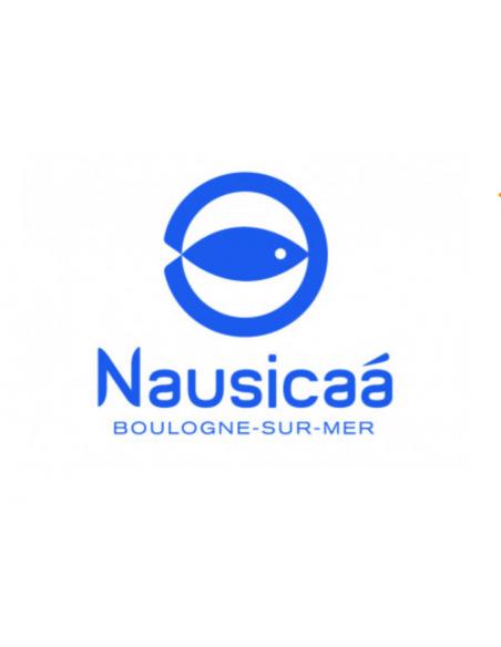 Billet pas cher Nausicaa Opale CE